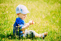 Gelukkig little boy kind sit in summer green grass Stock Foto's