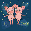 Gemini zodiac sign on night sky background with stars