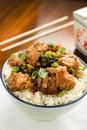 General Tso's Chicken Royalty Free Stock Photo