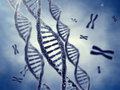 Genetic engineerring Stock Photography