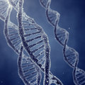 Genetic engineerring dna double helix molecules and chromosomes Stock Photos