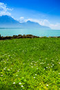 Geneva lake in summer beautiful scenery with near alps mountains Stock Image