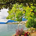 Geneva lake view park near in montreux Royalty Free Stock Images