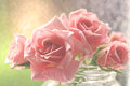 Gentle aquarel pink roses