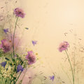 Gentle color floral background Royalty Free Stock Photo