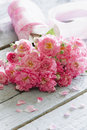 Gentle pink roses on wooden table shallow depth of field Stock Images