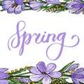 Gentle spring banner