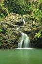 Gentle waterfall flows over rocks in hawaii misty flow a forest Stock Photos