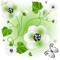 Gentle white-green floral background Royalty Free Stock Image