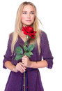 Gentle woman with red rose portrait of attractive beautiful isolated on white background receive gorgeous flower on valentine day Stock Images