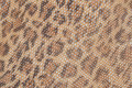 Genuine leather texture background close-up, embossed under the skin a beautiful pattern of leopard, Natural shades
