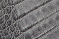 Genuine leather texture background, crocodile skin print, matte surface, fashion pattern. Diagonal arrangement. Concept