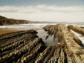 Geologic folds in Zumaias beach Stock Image