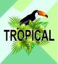 Geometric tropical background. Royalty Free Stock Photo