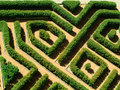 Geometrical garden Royalty Free Stock Images
