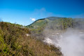 Geothermal Landscape - Rotorua, New Zealand Stock Images