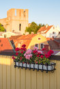 Geraniums decorating a balcony in visby sweden the view over the old town of gotland Stock Image