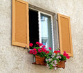 Geraniums in window box pink and red with wooden shutters Stock Photos