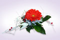 Gerbera bouquet in the background Stock Images