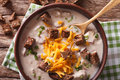German beer soup with cheese and bacon close up in a bowl. horiz Royalty Free Stock Photo