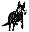 German shepherd dog silhouette with aport object Stock Photos