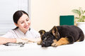 German Shepherd puppy and vet Royalty Free Stock Photo
