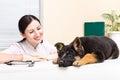 German Shepherd puppy and vet Royalty Free Stock Photo