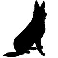 German shepherd silhouette black of a sitting Stock Photos