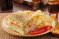 Geroosterde panini van turkije Royalty-vrije Stock Foto