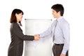 Geschäftsfrau und geschäftsmann shaking hand Stockbilder