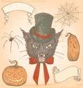 Getrokken hand uitstekend halloween griezelige cat vector set Stock Afbeelding