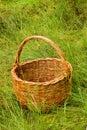 Geweven mand in het gras Stock Afbeeldingen