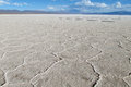 Gexagonal texture of salt at the surface of Uyuni Salar, Bolivia