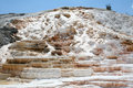 Geyser at Mammoth Hot Springs. Stock Photos