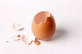 Gg shell opening egg it uncooked splinter Stock Images
