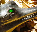 Gharial green eye and teeth closeup Royalty Free Stock Photo