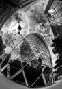 Gherkin in London Royalty Free Stock Photos