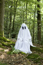Ghost in forest Royalty Free Stock Photo