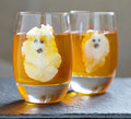 Ghost jello treats for halloween orange jelly and whipped cream Stock Photos