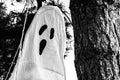 Ghost screams
