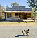 Ghost town cracow queensland australia deserted shacks in in outback Stock Photography