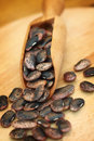 Giant black beans close up shallow dof Stock Image