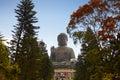 Giant buddha statue Royalty Free Stock Photo