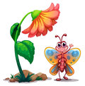 A giant flower beside a colorful butterfly illustration of on white background Stock Photos