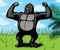 Giant Gorilla Royalty Free Stock Images