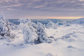Giant Mountains in winter Royalty Free Stock Photo