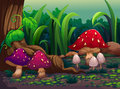Giant mushrooms in the forest illustration of Stock Photography