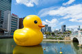 Giant rubber duck at osaka japan september big with skyline in nakanoshima park on sepetmber sculpture by florentijn Royalty Free Stock Photography