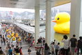 Giant rubber duck visits hong kong the m tall public art installation created by dutch artist florentijn hofman made a splash in Royalty Free Stock Photos