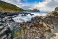 The Giant`s Causeway  in the morning. Royalty Free Stock Photo